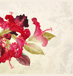 With hibiscus flowers in retro style vector