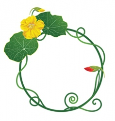 lily pad frame vector image vector image