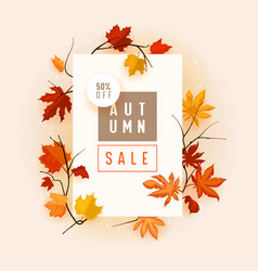 autumn sale banner with fallen maple leaves on vector image