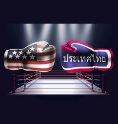 boxing gloves with prints of the usa and thai vector image