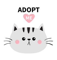 gray cat round face silhouette adopt me pink vector image