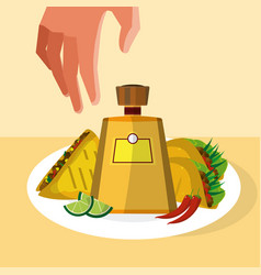 Hand grabbing mexican food vector