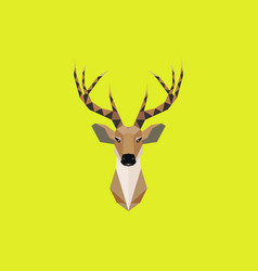 multicolor deer head in beauty geometric vector image