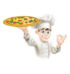 Okay sign pizza chef vector