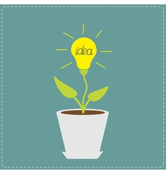 Plant in the pot with lamp bulb Growing idea conce vector