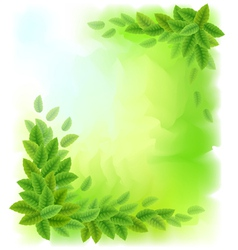 Sunny background with green leaves vector