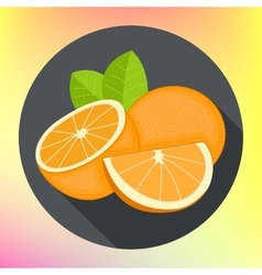 Sweet oranges flat icon vector
