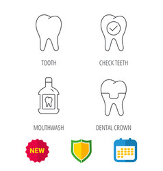 Tooth dental crown and mouthwash icons vector