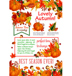 Autumn season leaf fall harvest vegetable poster vector