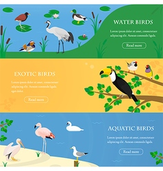 Birds horizontal banners set vector image