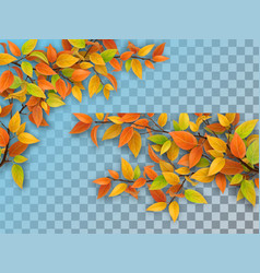 set tree branches with autumn leaves vector image