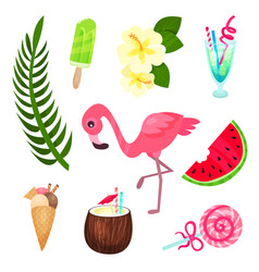 tropical summer time set exotic elements for vector image