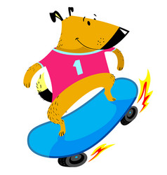 dog character skates sporty pet on skateboard vector image vector image