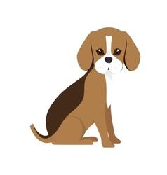 beagle breed dog cartoon vector image