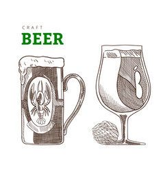 beer mug and glass with hop branch craft beer vector image