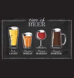 Beer types a visual guide to types of beer vector