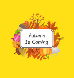 cartoon autumn elements set and leaves vector image