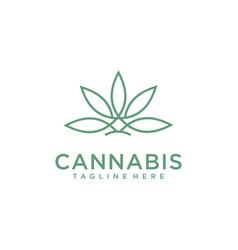 Cbd cannabis marijuana hemp pot leaf with line art vector