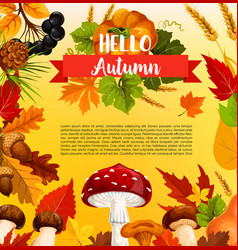 Hello autumn poster template with fall season leaf vector