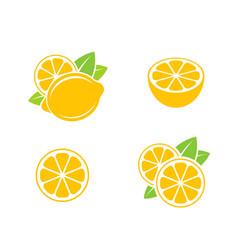 lemon citrus fruit on white background vector image