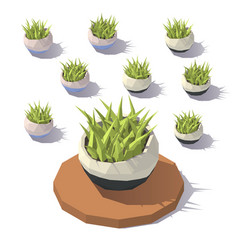 Low poly potted grass vector