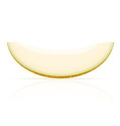Melon 02 vector