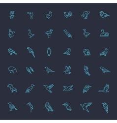 Set of different birds vector