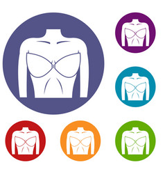 female breast in a bra icons set vector image