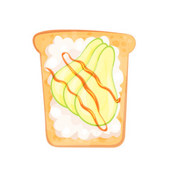 fresh cottage cheese and avocado on slice of vector image