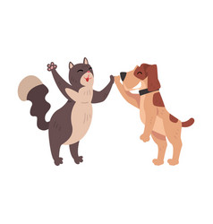 Funny cat and dog together giving high five to vector