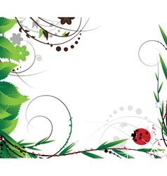 Green foliage and ladybug vector image