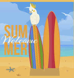 parrot paradise beach banner vector image