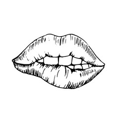 sketch monochromatic drawing bitten lip vector image