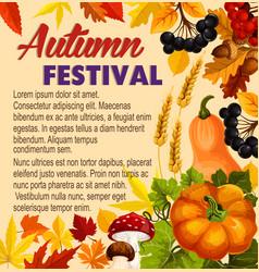 autumn acorn leaf pumpkin festival poster vector image