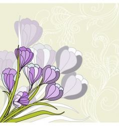 greeting card with violet vector image vector image