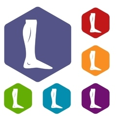 Human leg icons set vector image