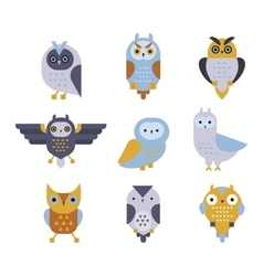 Owl wild bird cartoon vector