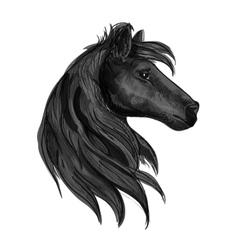 Black purebred horse stallion symbol vector image