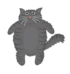 Cat grey cute vector