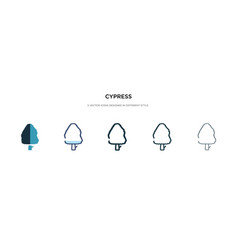 Cypress icon in different style two colored and vector