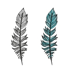Doodling hand drawn amazing feathers with patterns vector image vector image