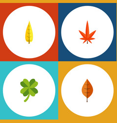 Flat icon maple set of aspen leafage maple and vector
