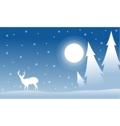 Silhouette of spruce deer wityh moon Christmas vector image