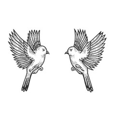 sparrow birds tattoo sketch engraving vector image