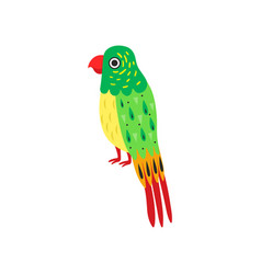 tropical parrot bird with colored feathers wings vector image