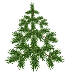 Green christmas tree fluffy fir green pine tree vector
