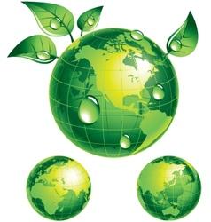 Flourishing globe vector image vector image