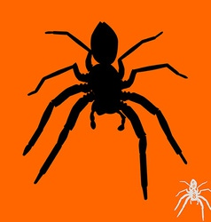 Spider silhouette vector image vector image