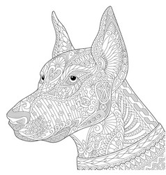 Doberman pinscher dog adult coloring page vector