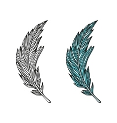 Doodling hand drawn amazing feathers with patterns vector image